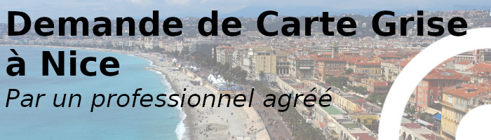 carte grise nice professionnel