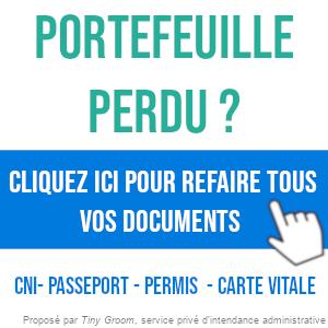 Perte De Carte Grise Duplicata Declaration De Perte Et Autres Demarches
