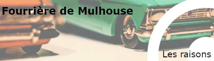 Raisons mise en fourrière Mulhouse